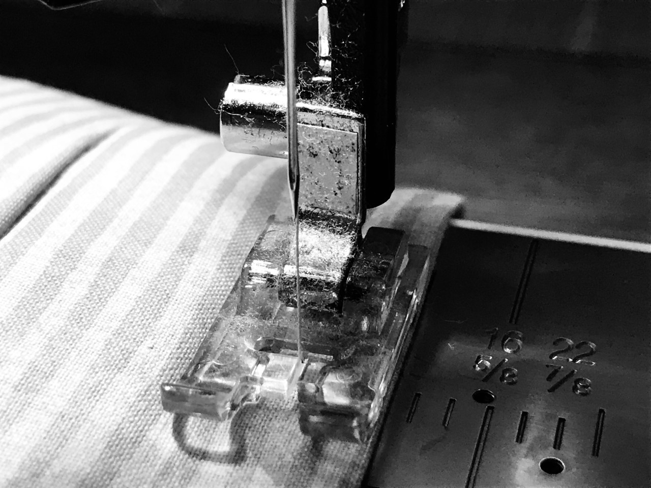 Needle and foot of a sewing machine.