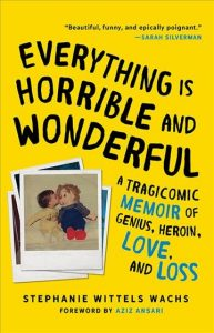 Cover image for Everything is Horrible and Wonderful