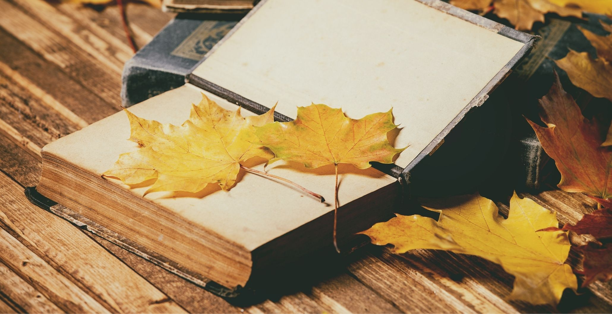 Books to Get You in the Mood for Fall