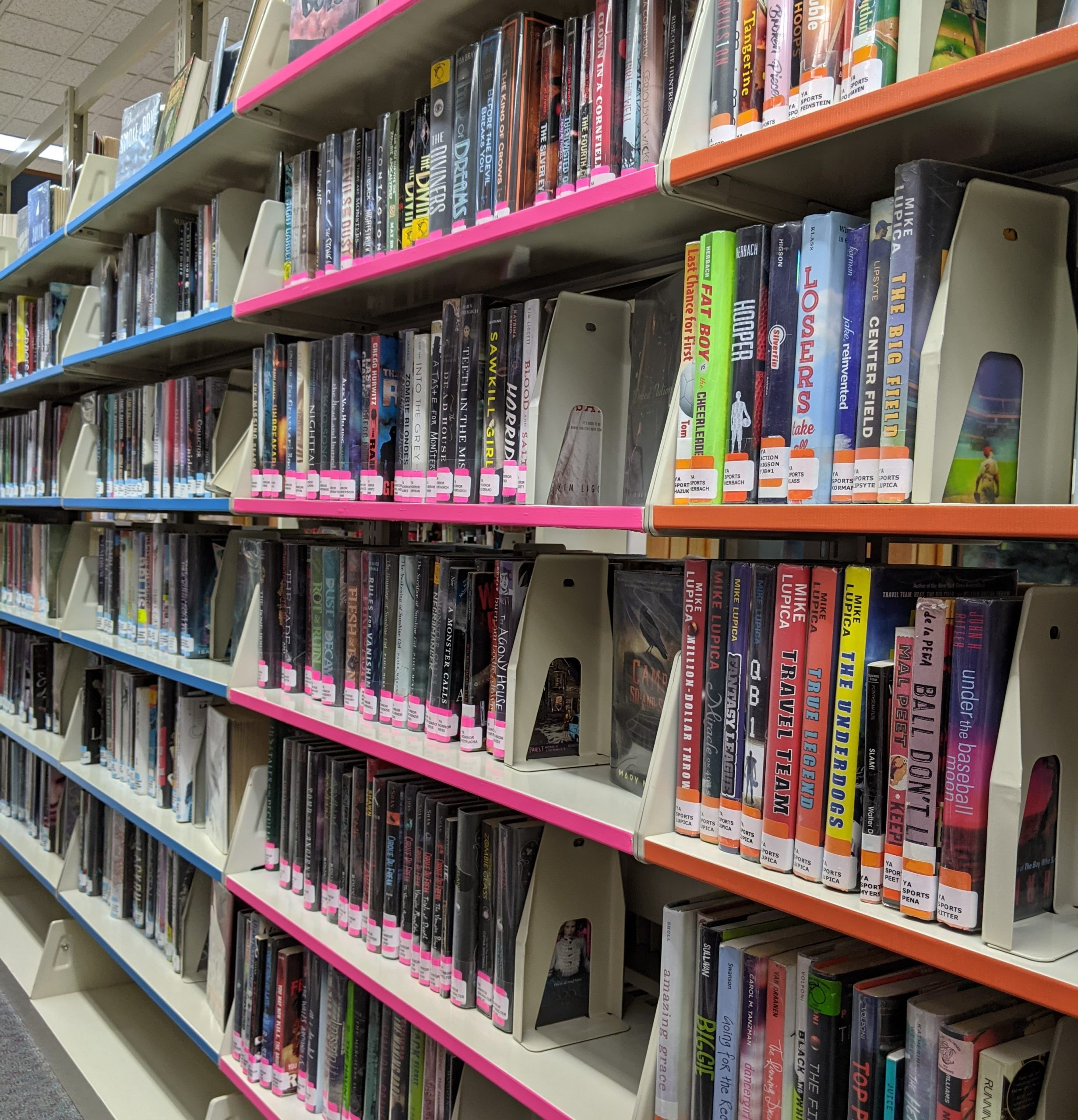 Check Out Our New Teen Section!
