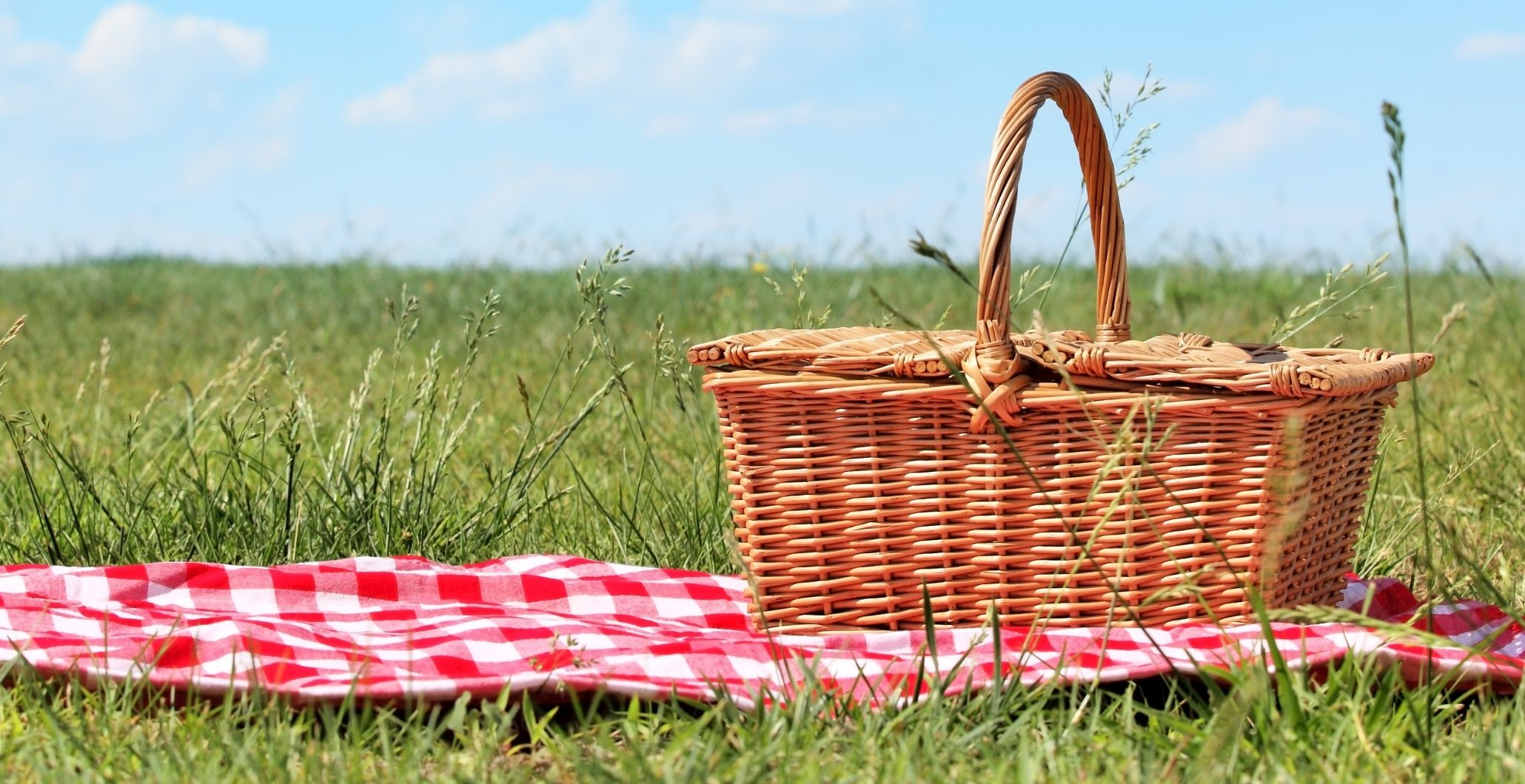Summer Grilling and Picnic Cookbooks